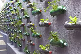 grow fresh vegetables this winter with a diy vertical garden
