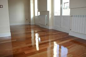 spotless cleaning of wooden floors