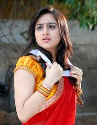 beautiful aksha pardasany hd wallpapers and latest images