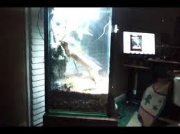 10 gallon fish tank to vertical terrarium conversion youtube