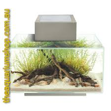 fluval edge aquarium 23l pewter the aquarium shop australia