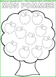 Pommier avec Pommes à colorier  Enseignement thème pommes et