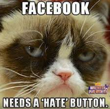 Mean Cat Memes - mean kitty meme 28 images grumpy cat is so mean cat memes