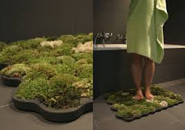 indoor gardening another way to add green in your bathroom