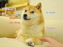 So Doge Meme - doge meme wikipedia
