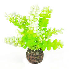 artificial plants biorb aquatic caulerpa aquarium artificial plants green target