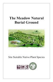 native plant species site suitable native plant species list