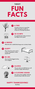 7 facts about the turkey infographic a for god