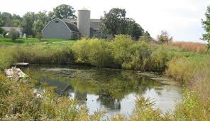 manage fish friendly farm ponds hobby farms
