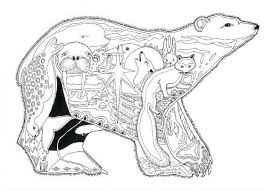 bear coloring pages adults printable coloring sheets