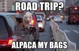 road trip alpaca my bags road rage alpaca meme generator
