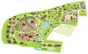 zoos colchester