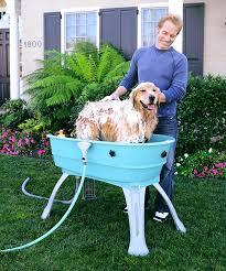 Bathtubs For Dogs Best 25 Dog Bathing Ideas On Pinterest Dog Wash Dog Washing