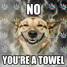 You Re A Towel Meme - stoner dog memes quickmeme