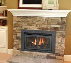 Gas Mantle Fireplace by Best 25 Gas Fireplace Inserts Ideas On Pinterest Gas Fireplace