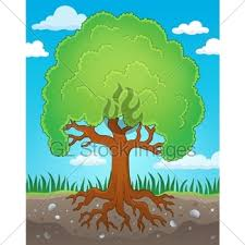 theme tree tree theme drawing 2 gl stock images