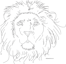 draw a lions face colouring pages for coloring pages draw a lion