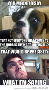Big Phone Meme - 198 best wicked funny images on pinterest funny stuff ha ha and