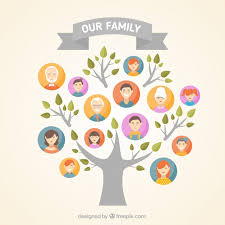 family tree vectors photos and psd files free