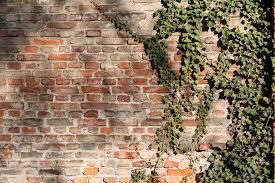 free photo brick wall bricks wall bricked free image on