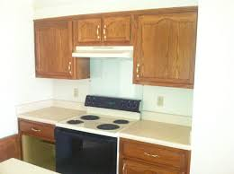How To Kitchen Design How To Remodel A 20 Year Old Kitchen For Less Than 3 000