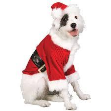 Pet Halloween Costumes Most Popular Pet Costumes Halloween 2016