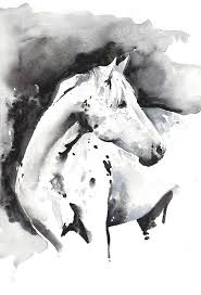 25 black horses ideas pretty horses horses