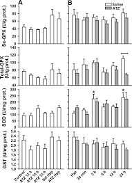 role of catalase on the hypoxia reoxygenation stress in the