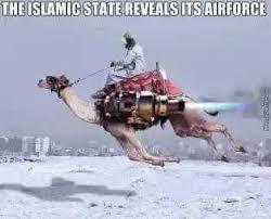 Camel Meme - the best camel memes memedroid
