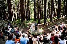redwood forest wedding venue wedding in the redwood forest mocchasunquick