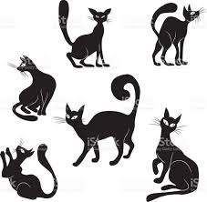 black cat icon silhouette collection vector animal set sketch