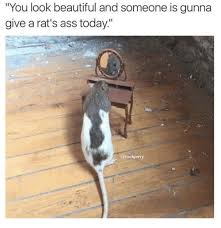 Rats Ass Meme - you look beautiful and someone is gunna give a rat s ass today