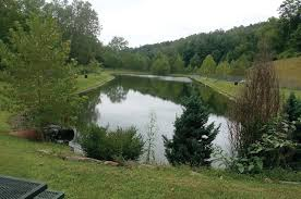 Catfish Backyard Pond by Guyses Run Fishing Park In Marion County West Virginia