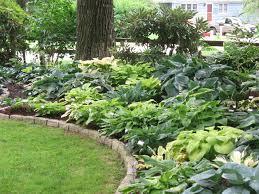 Shady Backyard Landscaping Ideas Best 60 Garden Ideas New England Decorating Design Of 737 Best