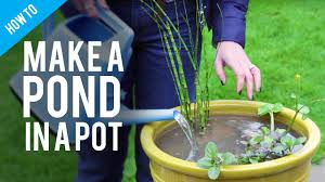 How To Make A Patio Pond How To Make A Pond In A Pot Youtube