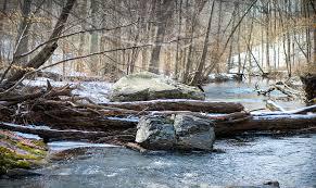 ridley creek state park orange trail the little gsp