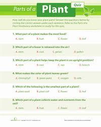 plant quiz worksheet education com