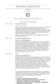 Resume Example Singapore by Director And Founder Resume Samples Visualcv Resume Samples Database