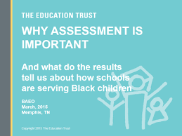 why assessment is important and what do the results tell us about
