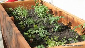 herb garden planter vegetable planter box turned herb garden julie writes in with