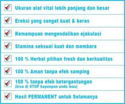 jual agen vimax canada original di jogja mamapuas pw agen
