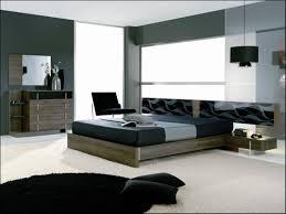 bedroom ao bedroom charming color beautiful schemes dark