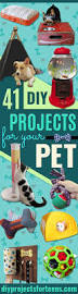 Diy Arts And Crafts Projects Pinterest Best 10 Easy Crafts Ideas On Pinterest Easy Projects Fun Easy