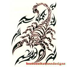 scorpion tattoo designs flash best cool tattoo designs