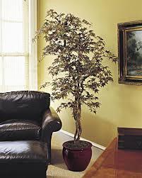 7 artificial japanese maple silk tree at silkflowers house