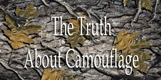 Color Blind Camouflage The Truth About Camouflage