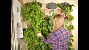 best vertical vegetable gardening systems youtube