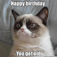 Grumpy Cat Meme Happy - happy birthday you got old grumpy cat you shouldn t have