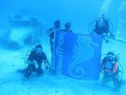 summer program seatrek bvi tropical adventures in sailing scuba