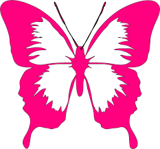 pink butterfly clip at clker com vector clip